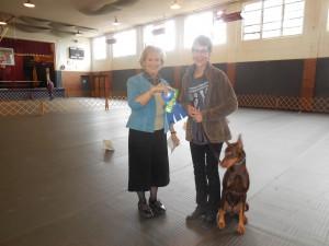 A proud winner at the OCA Dog Show held November 2015.